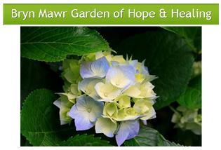Bryn Mawr Garden of Hope & Healing