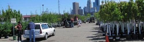Minneapolis 2014 City Trees Program - ALL TREES ARE SOLD OUT FOR THIS YEAR